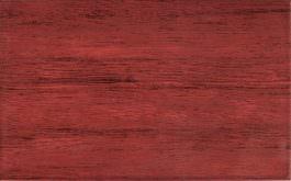 Pino Cardinal 25×40