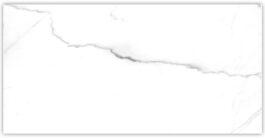 Carrara White 25×50